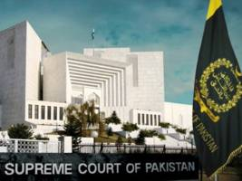 Pig barges into Pakistan Supreme Court